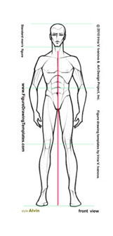 male_figure_drawing_front_view_01.jpg