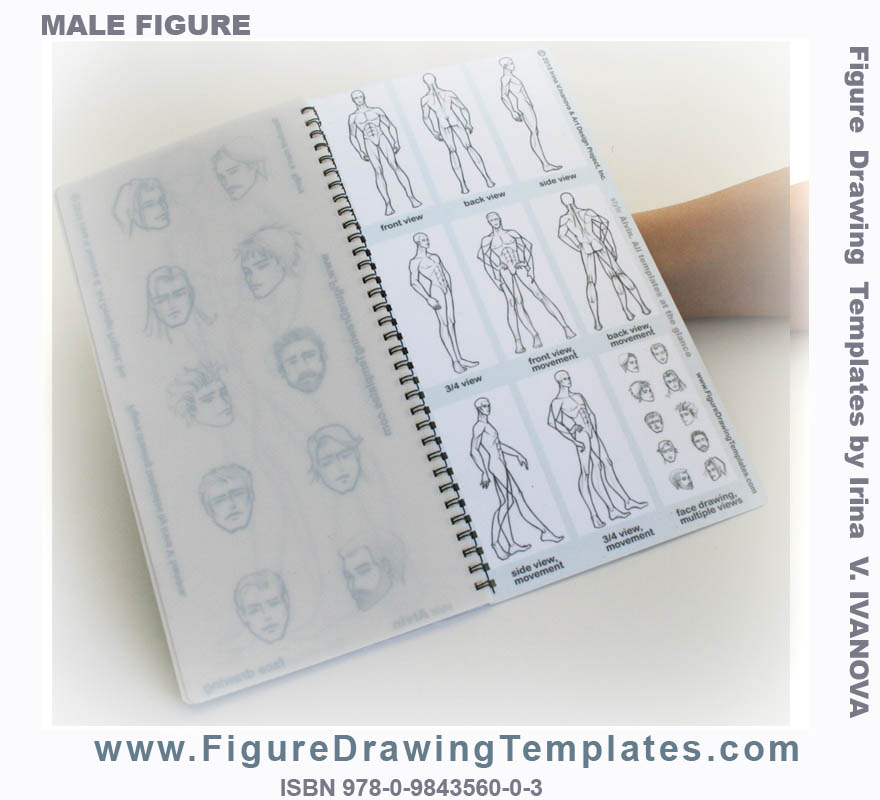 book of male figure drawing templates back cover